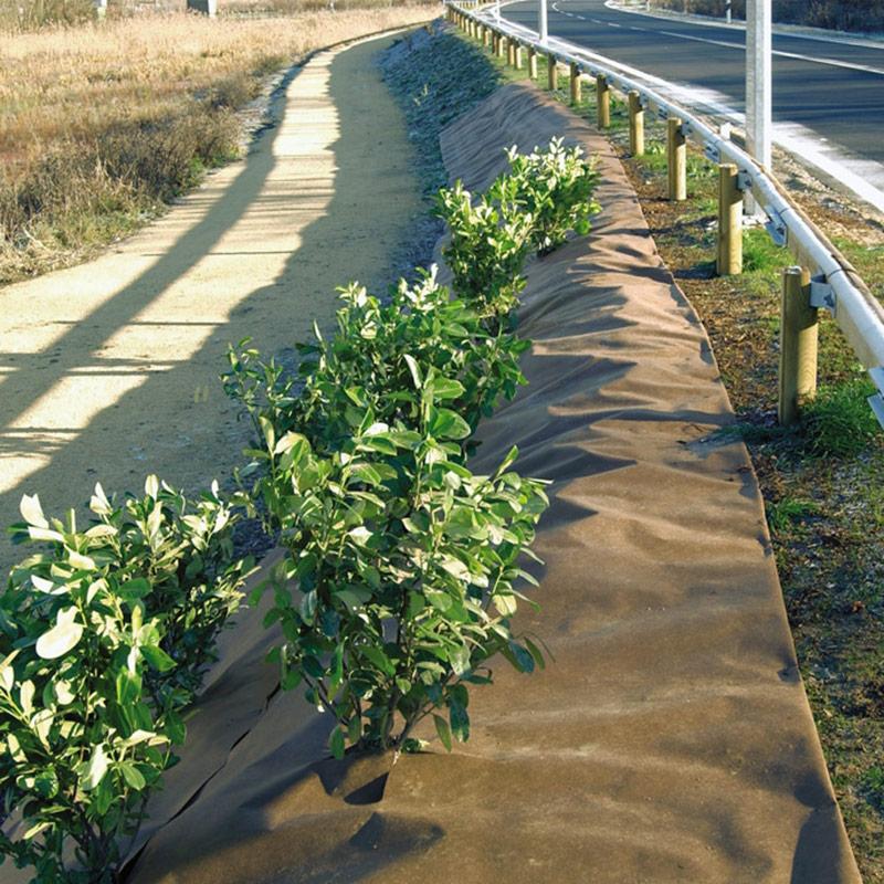 Barrière efficace contre les mauvaises herbes les plus tenaces ...