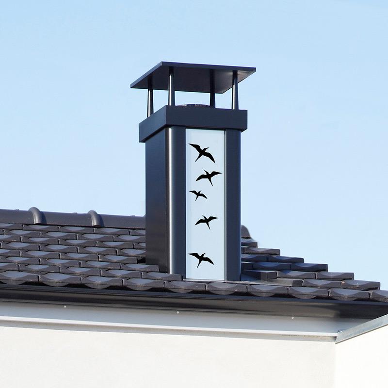 sortie de toit luminance sortie de toit fumisterie chemin es poujoulat les mat riaux. Black Bedroom Furniture Sets. Home Design Ideas